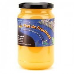Miel de printemps 500 g